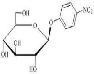惠诚生物4种PNPG产品,作为酶底物用