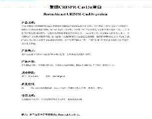 上海惠诚生物提供CRISPR-Cas13a蛋白,用于新型冠状病毒试剂盒研发